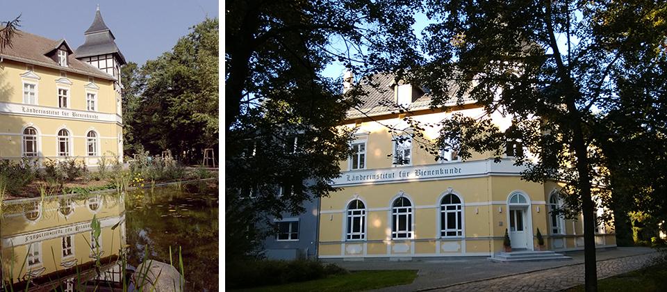 Hohen Neuendorf Bijen Instituut